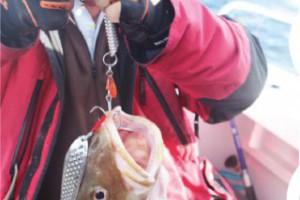 Заглянем в ателье морской рыбалки?