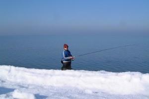 Зимний лосось