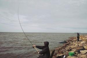 Десять советов для трудовой рыбалки фидерной снастью