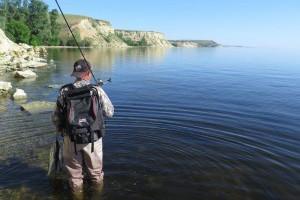 Рассуждения на тему «где искать рыбу?»