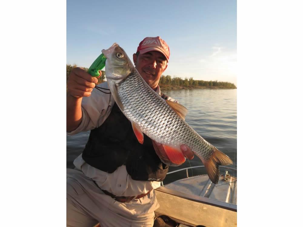В августе диких лагерей все меньше, рыба ловится все лучше