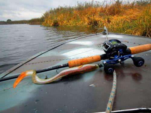 Фото 7. Real Eel 30см от Savage Gear-дна из моих самых любимых приманок