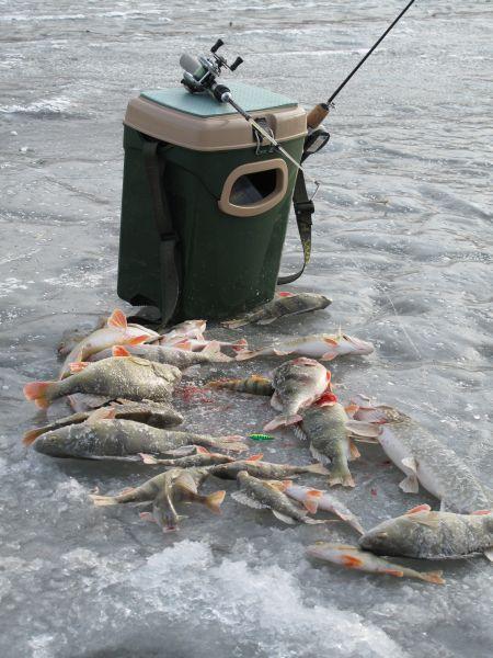 Рыболов без такого ящика с оконцем для улова будет мучиться, впихивая замерзшую рыбу в пакет