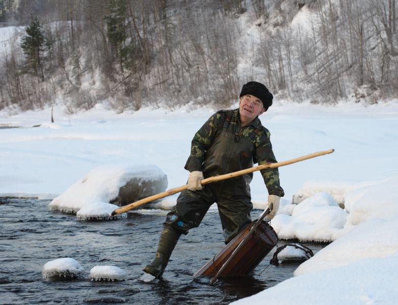 При удачном лове во вьюнницу попадает такое количество миног, что один человек не в силах вынуть её из воды