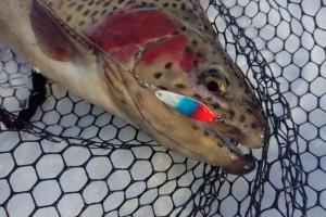 Сезоны Area Fishing. Поздняя осень