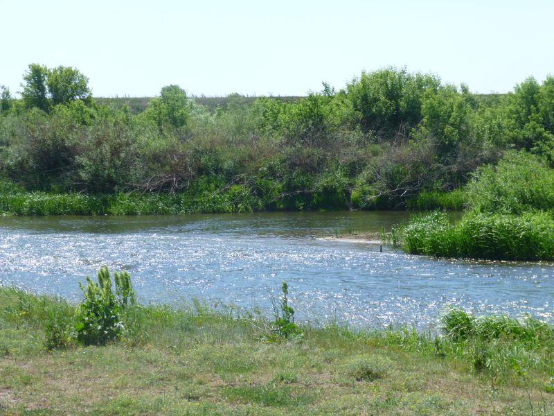На таких речках достаточно 3-граммового поплавка