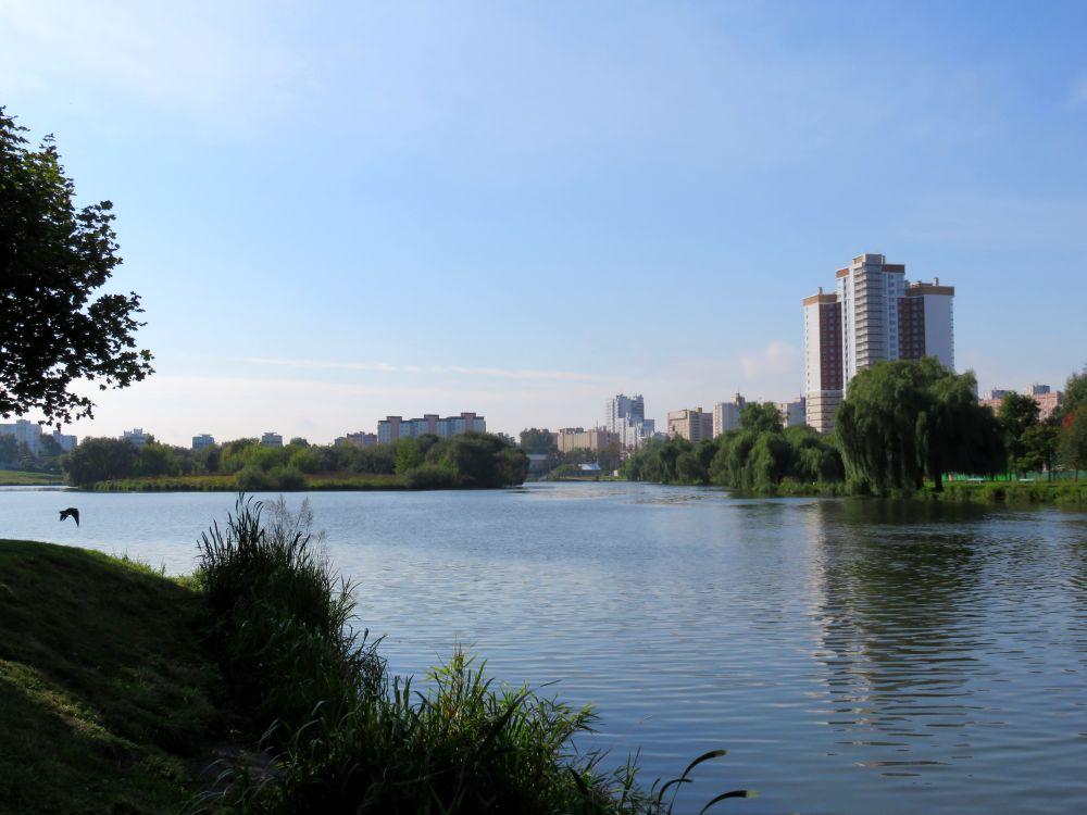 Где река впадает в водохранилище всегда стоит крупный окунь