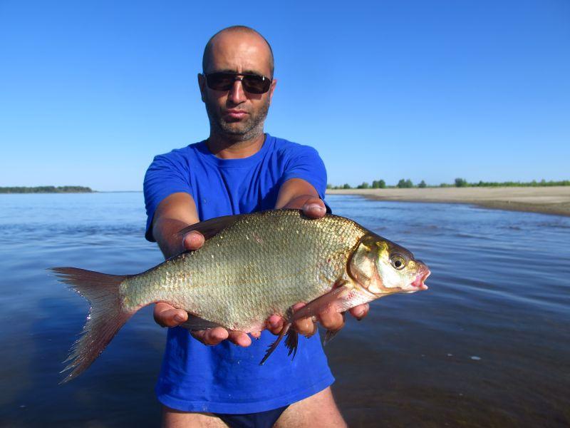 И это в самый полдень, когда с крутого берега рыбалки совсем нет!