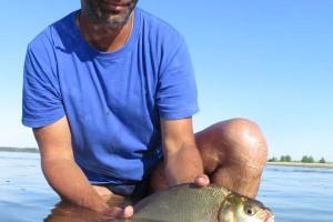 Ловля нехищной рыбы на песчаных косах