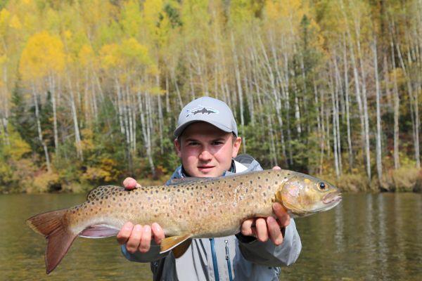 В верховьях  рек рыбы попадаются крупные