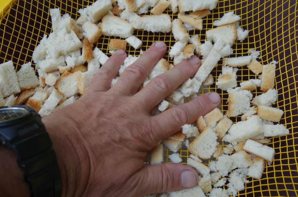 Для прикармливания леща или крупного карася ломтики хлеба с корками я протираю через сито с ячеей в 5 - 6 мм