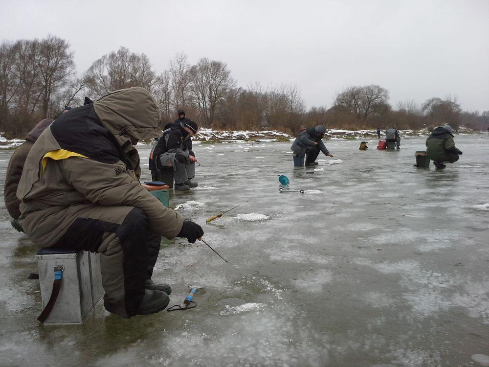 В затоках практикуется коллективный поиск стай мигрирующей рыбы