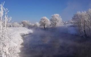 Зимний топ-вотеринг