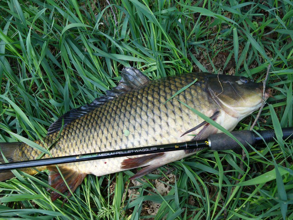 С этим «матчем» я испытываю наслаждение от рыбалки