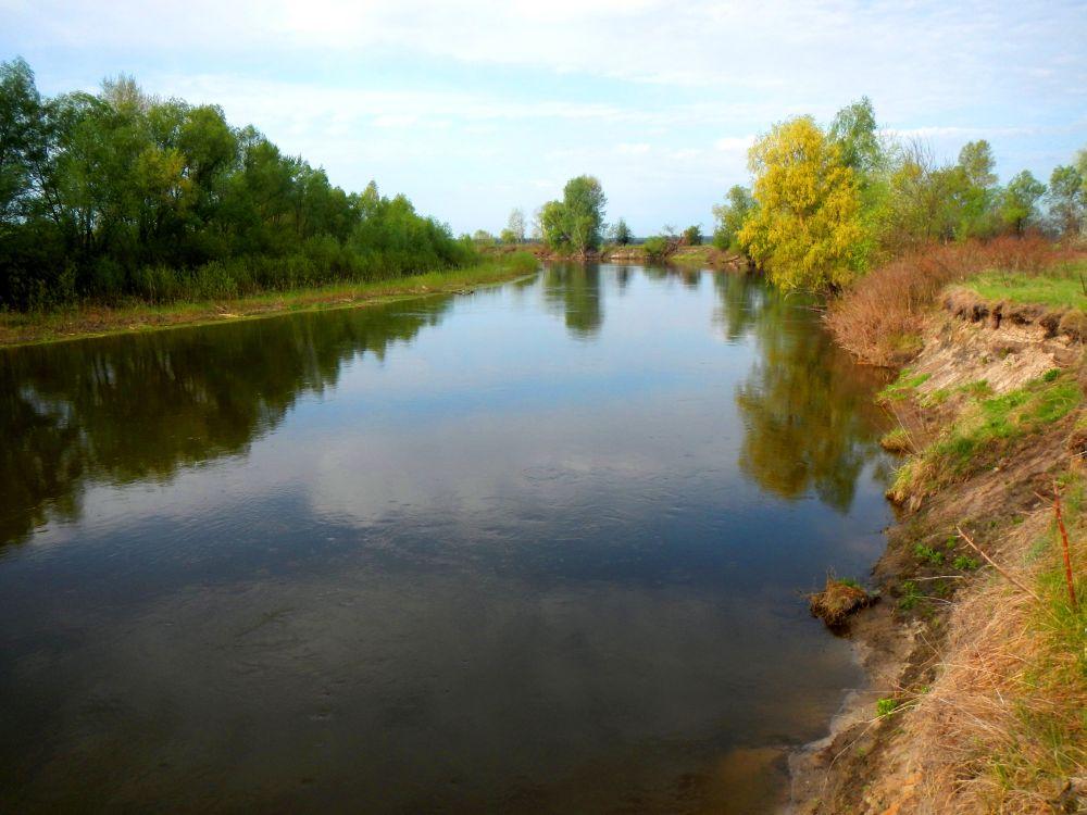 Рыбалка пуще неволи: чтобы попасть на заветный луг, приходится вброд форсировать речку Рать