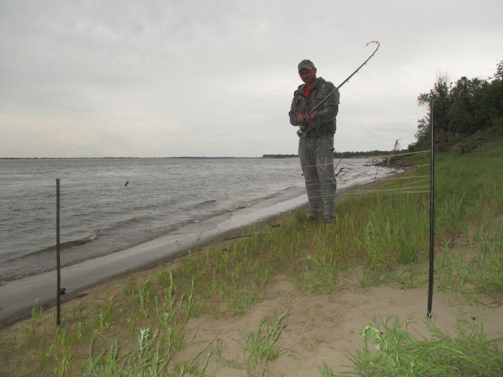 Установив дистанцию заброса, мы разматываем леску на воткнутые в берег колышки, считая получившиеся витки, а затем точно такое же количество витков сматываем на колышки с другого фидера