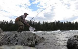 Взгляд на рыбалку через подсак