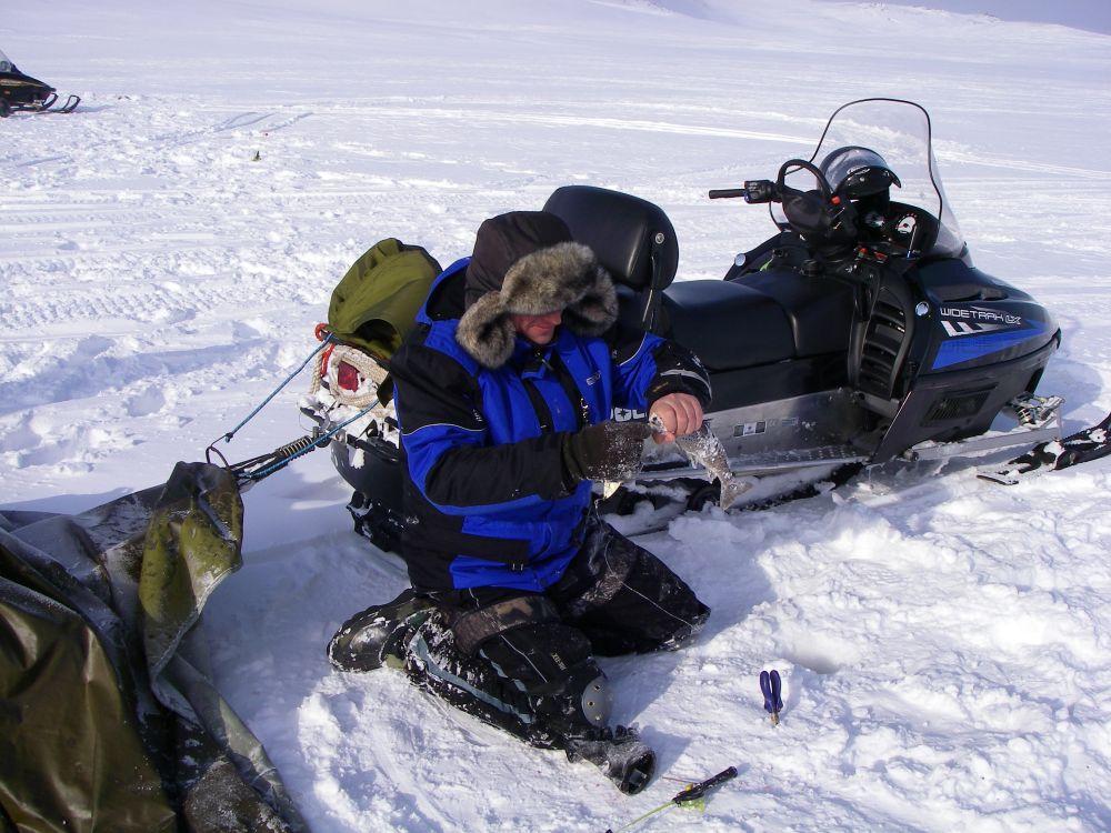 В тундру нельзя пускаться на единственном снегоходе