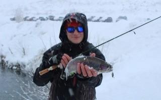 Зимняя форель и донные методы ловли