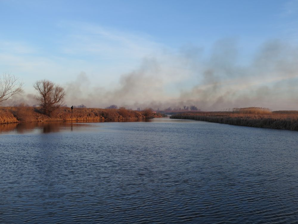 Напасть ранней весны – степные пожары