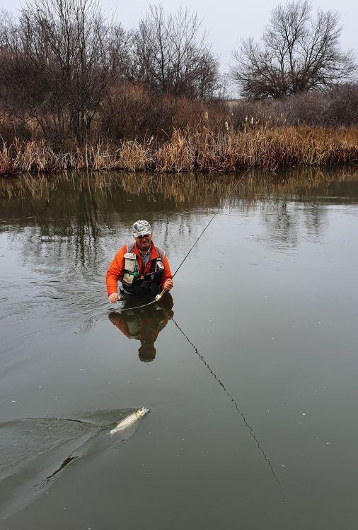 В ледяной воде взабродку долго не половишь