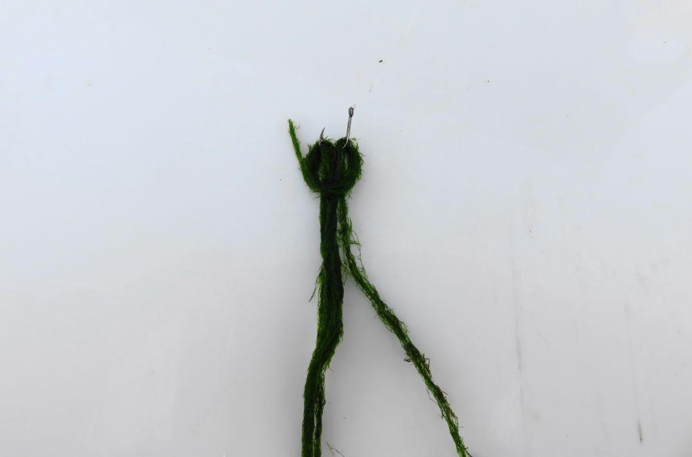 Как насадить зелень на крючок (г)