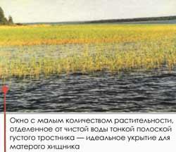 018-4.jpg