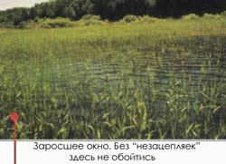 018-5.jpg