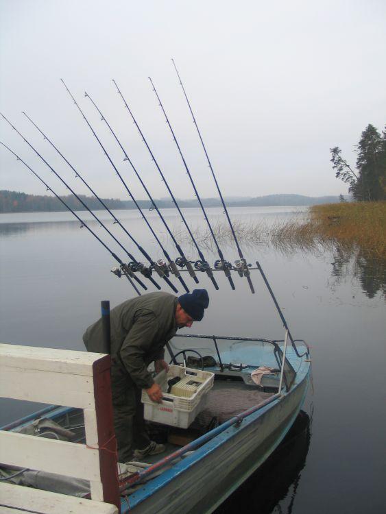 Доморощенные «троллингисты» с разнокалиберным оснащением - тем не менее, уверенно гробят рыбу