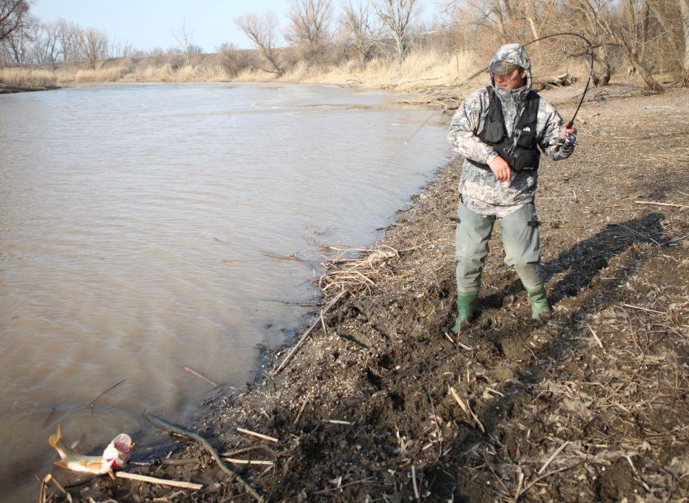 Легко вытянуть рыбу на отлогий бережок