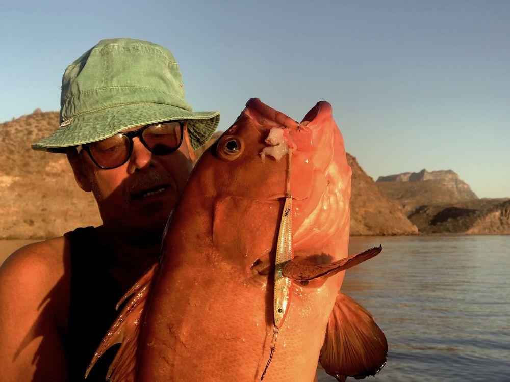 На глубинах 60 – 80 м ловлю в отвес пилкером с подсадкой рыбьего мяса