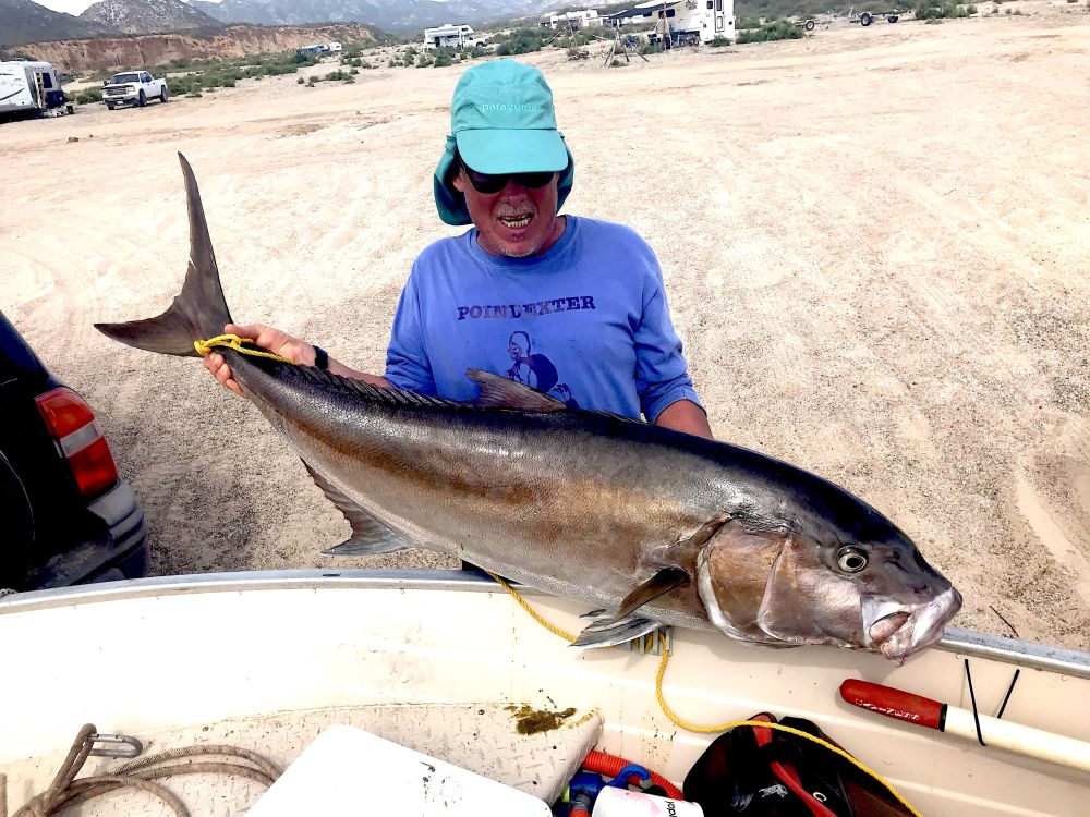 Самая большая моя рыбка с надувнушки - амберджек (Amberjack), потянувший на 24 кг