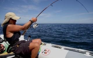 Рыбалка в стиле диско