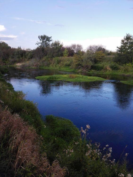 Типично голавлёвая река