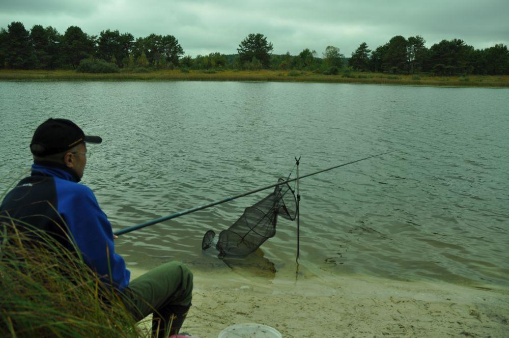 Осенью сажусь в полутора - двух метрах от уреза воды