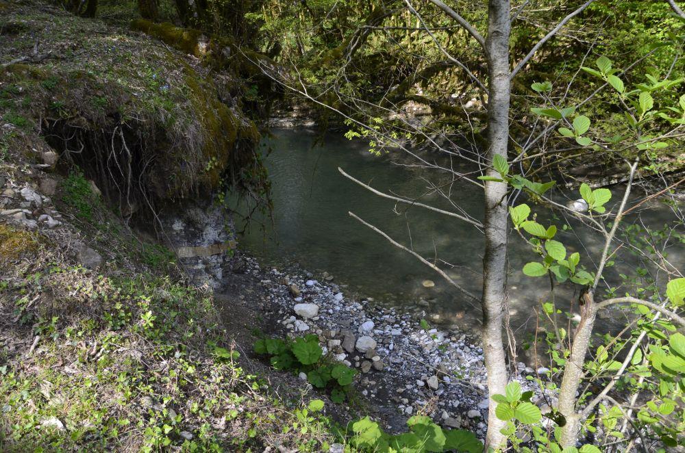 В таких местах забросить реально только поплавочной снастью