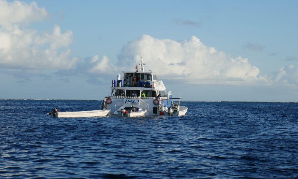 Наш комфортабельный катамаран тянет на буксире ловчие моторные лодки