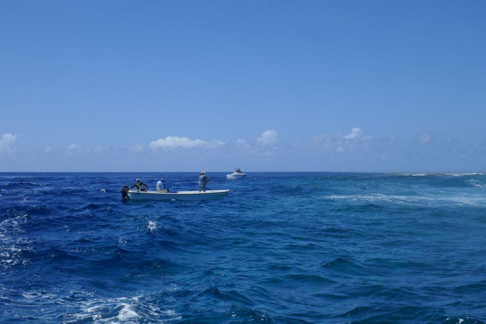 Ловля взаброс ведется по границам коралловых рифов