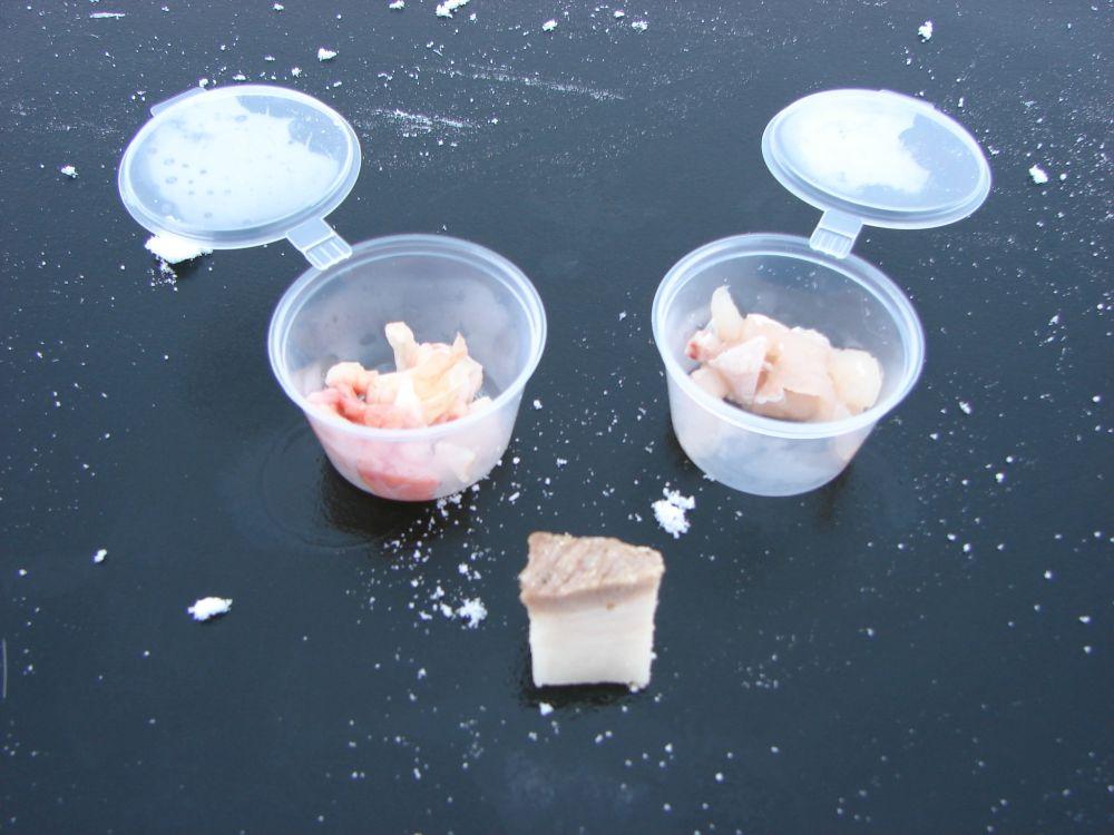 В этот раз я взял на лед куриную кожу, рыбье филе и свиное сало