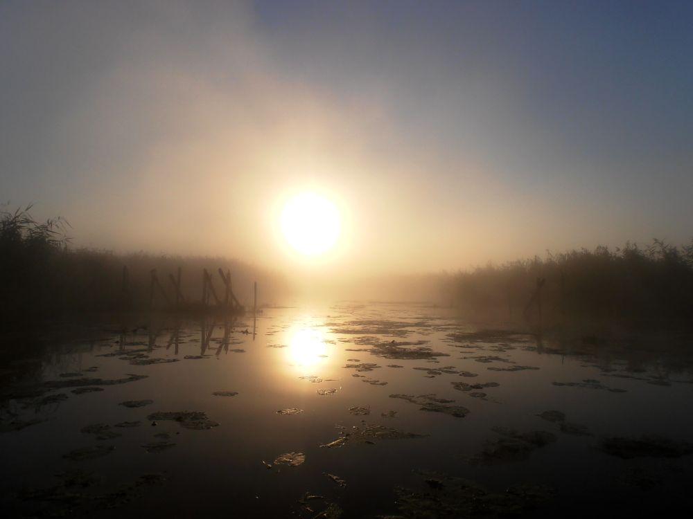 Рассвет на моей речке всегда красив