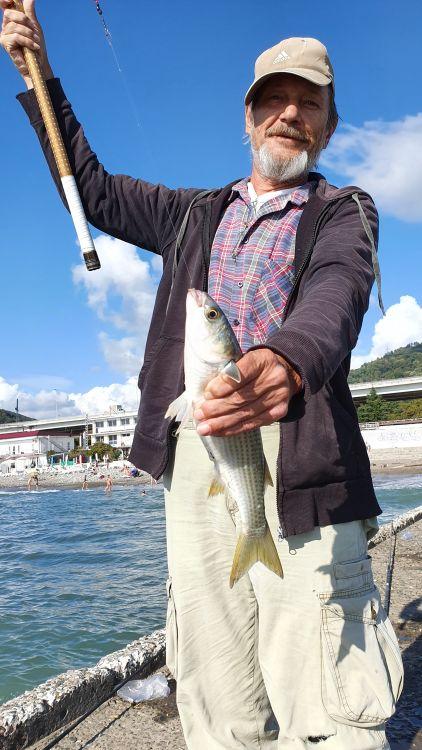 Лобастая кефаль – один из самых популярных объектов ловли сочинских рыбаков