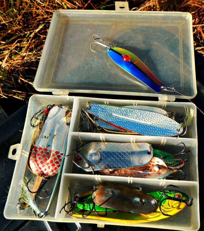 Всегда вожу с собой на рыбалку набор рабочих «колебалок»
