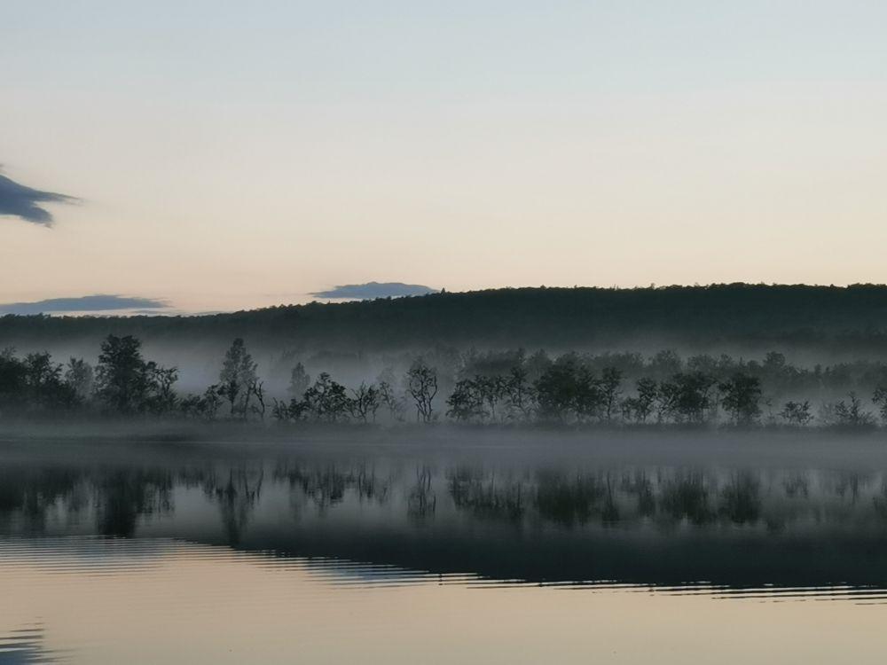 Ловить можно сутки напролет, но пики активности кумжи - вечером и ранним утром