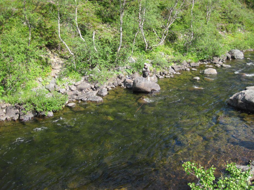 На таких речках апстрим - основной способ ловли кумжи