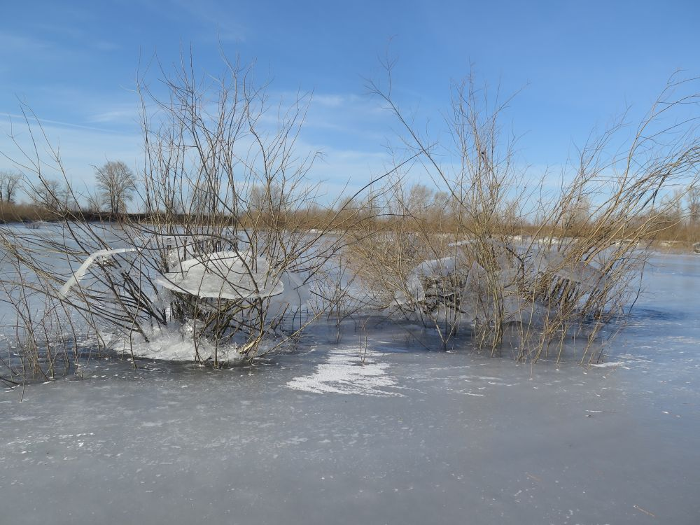 После зимнего паводка щуку придется искать заново