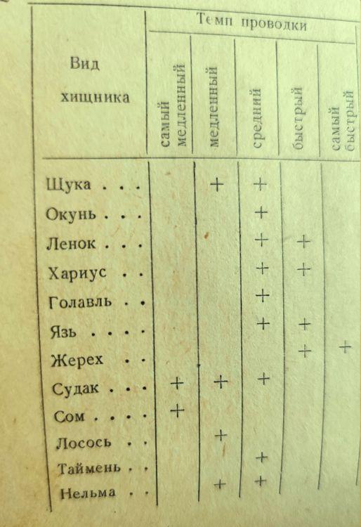 Пожелтевшая страница «древнего манускрипта»
