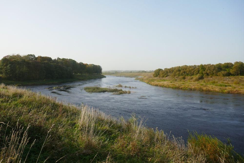 Жерех любит участки со сложным течением – «обратками», водоворотами, у островов