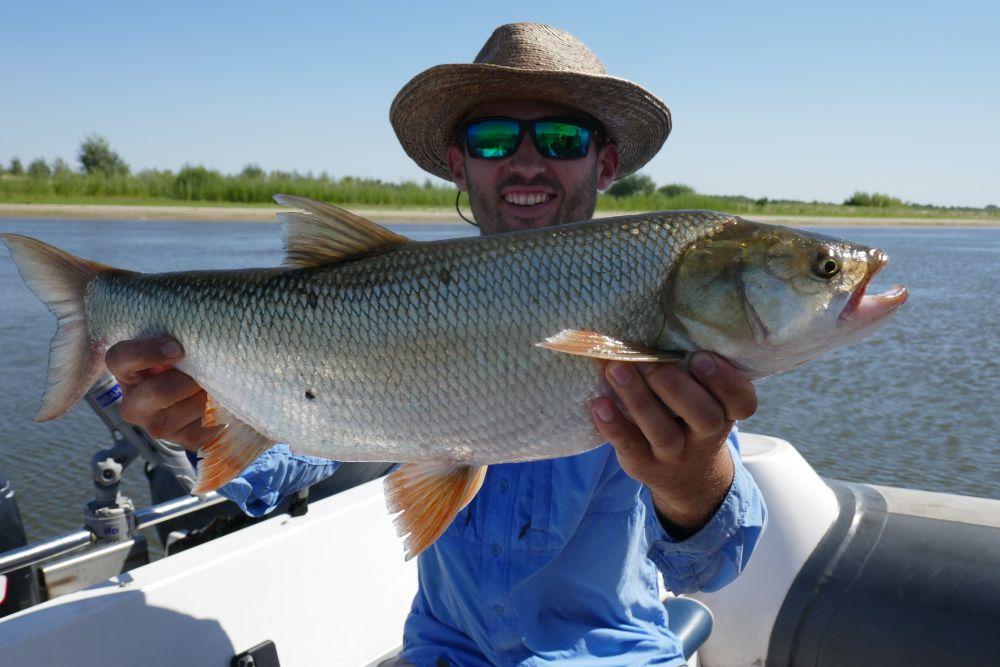 За день сплавной лодочной рыбалки покрываешь пару десятков километров реки
