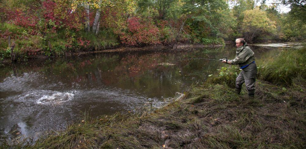 Узкая, грязная протока, вся в кустарниках и подводной траве. Заброс на пару метров, «твич» под ноги – и мощная поклевка!