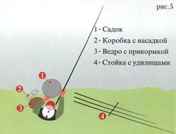 006-7.jpg